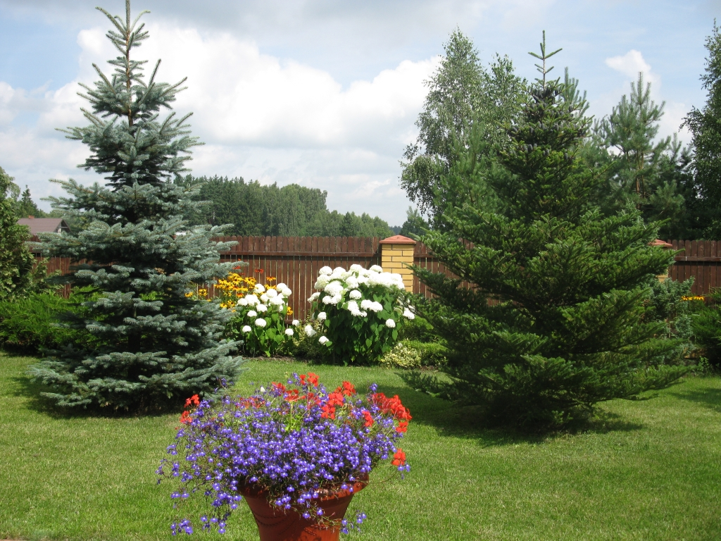Dom z pięknym ogrodem i udziałem w plaży, okolice Becejły.